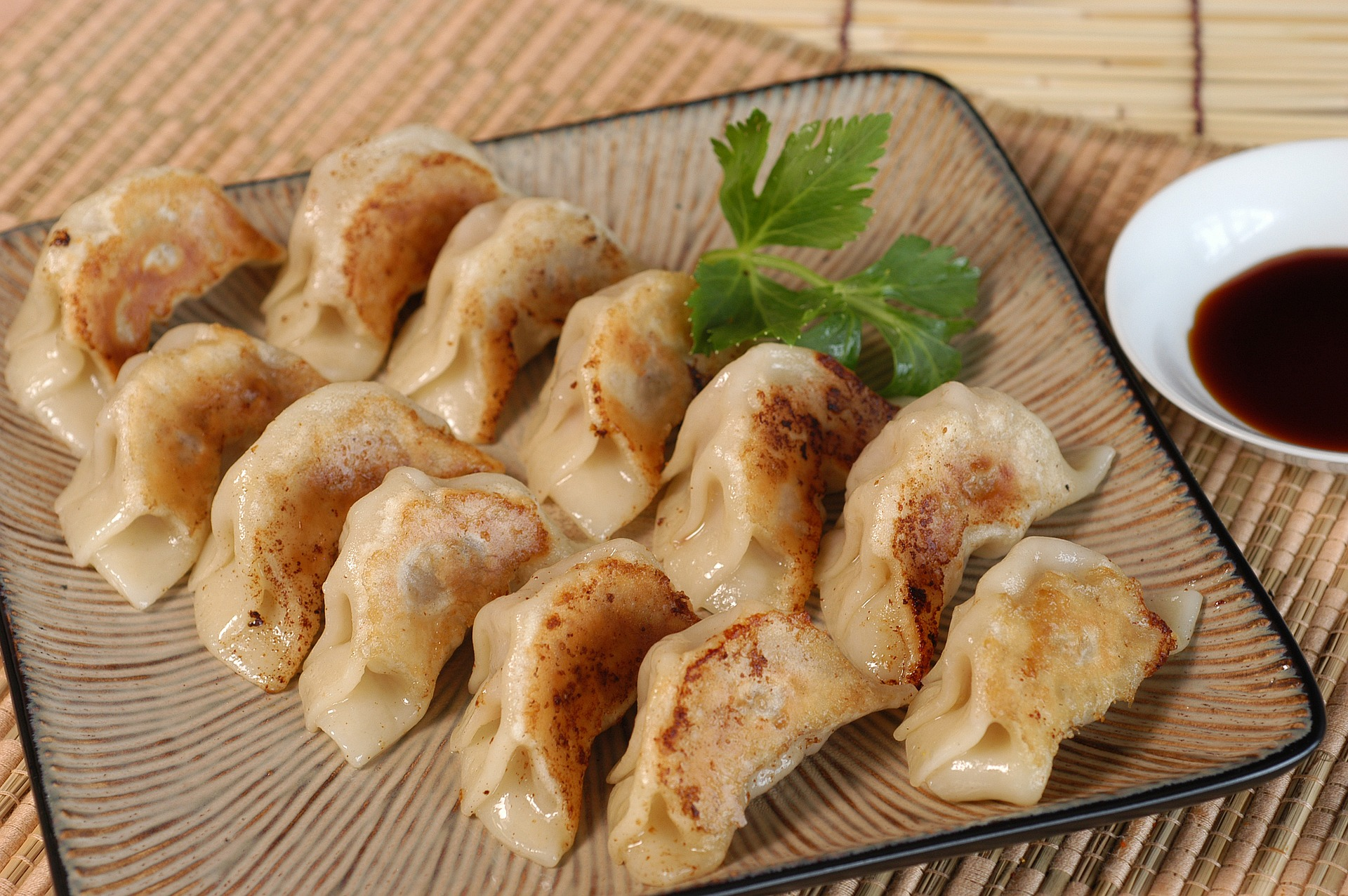 Potstickers (Chinese Dumplings)
