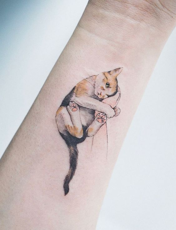 51 Cute Cat Tattoo Ideas
