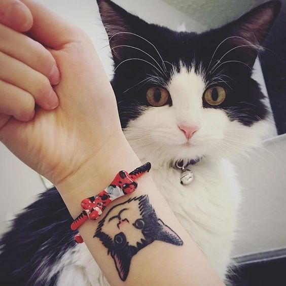 cute cat tattoos, cute tattoo ideas